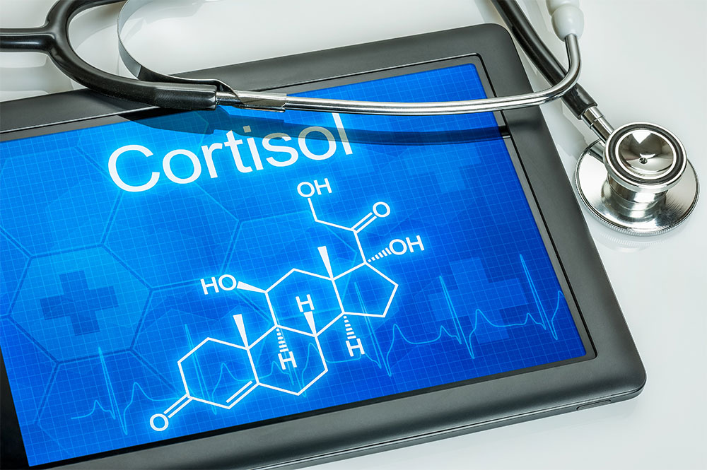 Image of cortisol